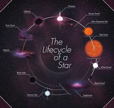 Astronomy: Solar system Guide: Cosmology and Space Science: Space Exploration: Buying a Telescope: Cosmos, Earth Science, Science And Nature, Neutron Star, Space Facts, Science Facts, Mad Science, Science Biology, Science Humor
