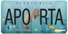 Ahora puedes llevar en tu carro la primera tablilla ambiental de Puerto Rico, la del Estuario de la Bahía de San Juan.