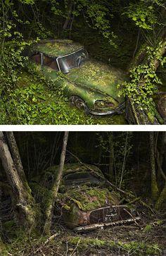 Paradise Parking by Peter Lippmann | Inspiration Grid | Design Inspiration