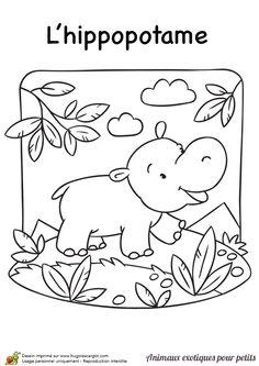Coloriage Bebe Hippopotame.8 Belles Images De Dessin Hippopotame Animal Drawings Printable