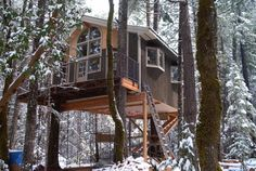 A Live-In Oregon Treehouse / The Green Life <3