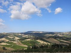 Nascondiglio di Bacco B&B, Marche, Italy. The amazing quilted hills of the Marche are visible in all directions, with vineyards, olive groves and grain fields offering contrasting colours http://www.organicholidays.com/at/2516.htm