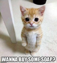 Wanna buy some soap?