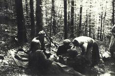 Местная женщина кормит в лесу воинов УПА. Фото: oun-upa.org.ua