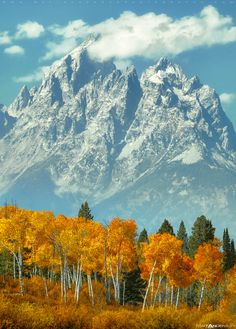 Mountain Magic (Grand Tetons, Wyoming)