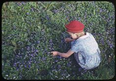 Charles W. Cushman Photograph Collection >> Highlights >> Slide Show