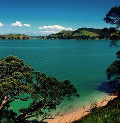 The perfect start to summer. Waiheke ✌️