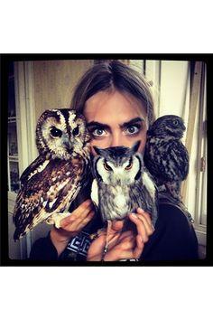 Cara Delevingn and Owls
