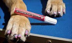 nail art animali