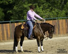 Riding Exercise #12: Down and Around Goal: To be able to flex the horse to the right and then bring his nose around straight and have him soften vertically and then flex him to the left. So it should be: Flex to the right side, down, left side, down, right side, etc. There should be no tension or resistance whatsoever from the horse, and his poll should never come above his withers. More about the exercise: https://www.downunderhorsemanship.com/Store/Search/intermediate