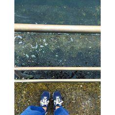 【maigohan_126】さんのInstagramをピンしています。 《夏の海もいいけど 秋の海もいい. #海  #横浜  #みなとみらい》