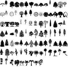 Más de 150 palmeras y árboles vectorizados – Puerto Pixel | Recursos de Diseño