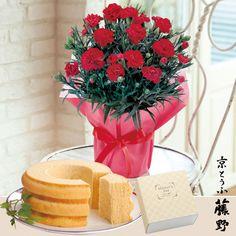 日比谷花壇 京とうふ藤野「バームクーヘンとカーネーション鉢のセット」