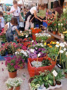 market-day-at-Santanyi,  Mallorca  Spain
