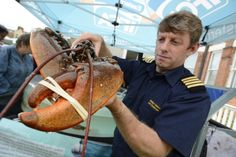 Cromer and Sheringham Crab and Lobster Festival at Evington Lawns and on the pier - Phil Haslam of the Inshore Fisheries and Conservation Authority with a lobster  Picture: MARK BULLIMORE