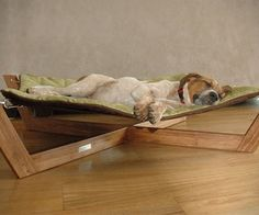 Dog Hammock for sookie because keilin would never stay in it @Amber Jean