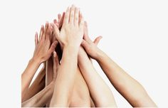 hand, Up, Show Of Hands PNG Image