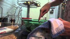Brincando de Ana Maria: Brigadeiro com bolacha