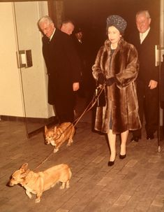 As Queen Elizabeth II celebrates 60 years on the throne, we look back at her love affair with her favorite animal: the corgi. Her first, Susan, was given to her on her eighteenth birthday and since...
