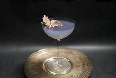 An Absinthe and Gin cocktail from Maison Premiere in New York.