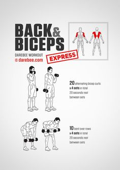 Back & Biceps Express Workout