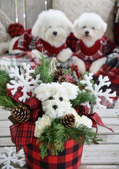 Christmas Arrangements, Christmas Centerpieces, Flower Centerpieces, Floral Arrangements, Christmas Decorations, Burlap Ribbon Wreaths, Happy National Dog Day, White Carnation, Diy Bouquet