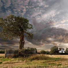 Boscobel House in Shropshire once provided the perfect hiding place for a fleeing King Charles II. After defeat at the Battle of Worcester in 1651, he hid all day in a tree before spending a cramped night in a 'priest's hole' still visible in the house.