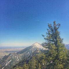 looking towards bear peak from green mountain. soaking up those blue skies. #irunthisbeard #timeToPlay by nicklauscombs