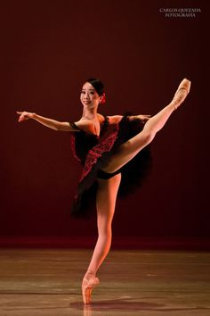 "Mayuko Nihei in ""Don Quixote"" # National Dance Company of Mexico # Compañía Nacional de Danza de México # photo © Carlos Quezada"