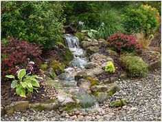 Pondless waterfall.  I love the colors and textures of the plantings around it.  http://www.aquascapes4all.com/images/pondless-after.jpg