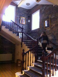Visite De Marie Laurence En Octobre 2013 Griffith College Irlande Dublin