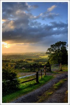 Evening in Rural Monmouthshire, Wales, UK