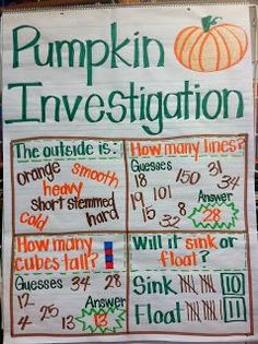 Lowes' Kindergarten Korner: Pumpkin Investigation oh my goodness, I can't wait to have my own classroom and do this for the first week in autumn! Fall Preschool, Kindergarten Science, Kindergarten Classroom, Classroom Activities, Classroom Ideas, Bulletin Boards For Preschool, Halloween Crafts For Kindergarten, Kindergarten Circle Time, Kindergarten Thanksgiving