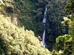Cascadas Vino Tinto. Costa Rica. Turismo Santa María de Dota.
