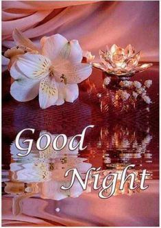 good night wishes * good night & good night sweet dreams & good night quotes & good night quotes for him & good night blessings & good night wishes & good night images & good night gif Good Night Flowers, Beautiful Good Night Images, Good Night Images Hd, Good Night I Love You, Romantic Good Night, Good Night Friends, Good Night Gif, Good Night Wishes, Night Pictures
