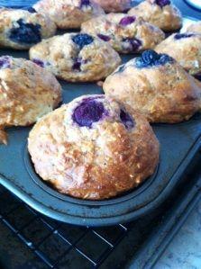 Low Fat High Fiber Berry muffins