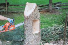 tree stump gnome houses | Tree Stump Fairy House