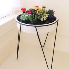 I love my new planter! #thelarsonhouse