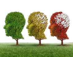 Por demencia entendemos el deterioro de las funciones cognitivas de una persona en relación a como las tenía anteriormente. Se diferencia del déficit cognit