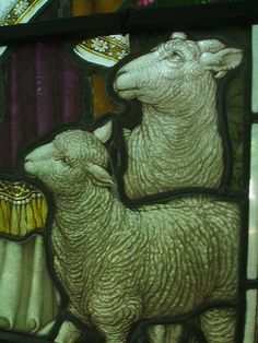 Sheep, Walton.  This is beautiful, reminds me of my Babydolls.