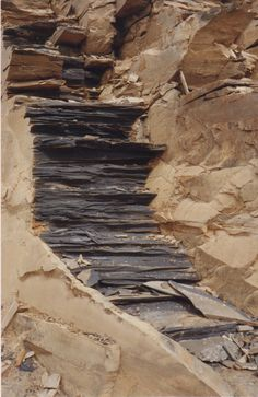Burgess Shale - Fresh cut shale, Walcott Quarry, Yoho National Park, Field, B.C., Canada photo source : L.Pierce