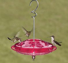 "Hummingbird Feeder, just like the one I gave Dad for Fathers Day :) I have it now.....and he ""visits "" me all the time.."""