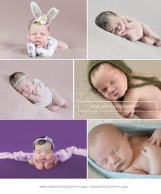 Newborn Photographer located in Northern virginia.Noelani Photography by Kristina Thompson