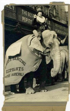 Pepito The Spanish Clown on a Power's Dancing Elephant, in front of an Orpheum vaudeville theater  1924, San Antonio, Texas  Photo: Joan Falcy and Melani Carty
