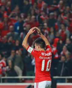 Hi, my name is Valéria. I´m 22 years old and I´m from Madeira Island, Portugal. I love football and SL Benfica! Benfica Wallpaper, Football, Canoeing, Volleyball, Futbol, American Football, Soccer Ball, Soccer