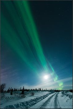 northern lights :)  -NASA