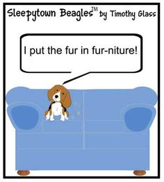 Sleepytown Beagles Cartoons / c.jpg @jaceybusbice