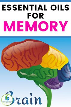 Looking for natural remedies for memory improvement? Discover the best essential oils for memory improvement to help stimulate your brain and boost memory, focus, concentration and other brain functions. Essential Oils For Memory, Essential Oil Uses, Doterra Essential Oils, Young Living Oils, Young Living Essential Oils, Diffuser Recipes, Natural Oils, Natural Health, Essentials