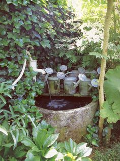 What a wonderful and beautiful way to display a collection of zinc watering cans with this fabulous water feature surrounded by lush greenery!