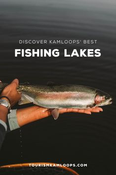 Kamloops has plenty of well known spots to catch fish along with some really great secret spots that are waiting for you to find them. Going Fishing, Ice Fishing, Best Fishing, Fall Months, Summer Months, Fraser Valley, Lake Resort, Fishing Guide, Rainbow Trout